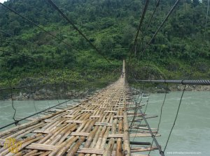 OCR_Bamboobridge_1024